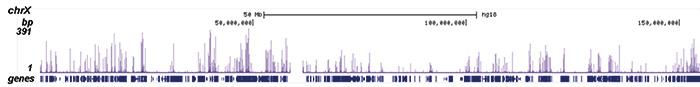 H3K56ac Antibody ChIP-seq Grade