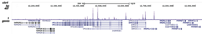 FOXA1 Antibody for ChIP-seq