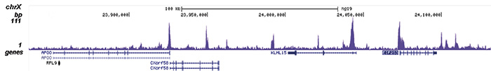 ChIP-seq results figure C
