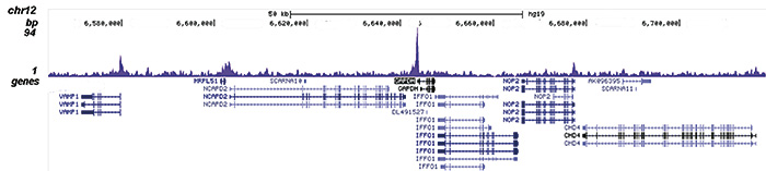 ChIP-seq results figure A