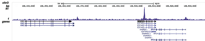 ChIP-seq results figure B