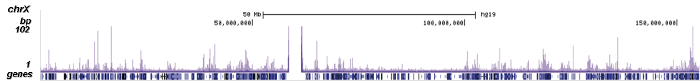 SMAD1 Antibody ChIP-seq Grade