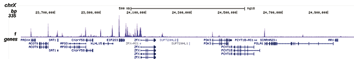 ChIP-seq results B