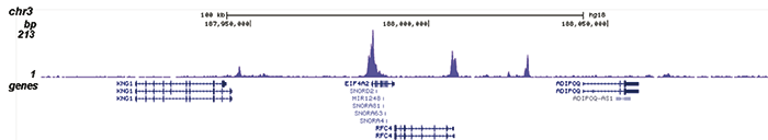 ChIP-seq results D