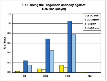 H3R2me2 Antibody ChIP Grade