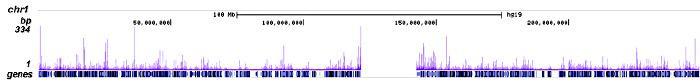CBX2 Antibody ChIP-seq Grade