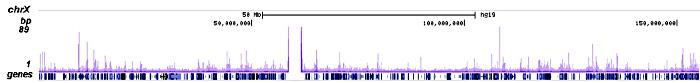 CHD7 Antibody ChIP-seq Grade