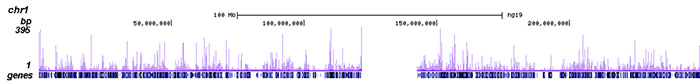 HDAC6 Antibody ChIP-seq Grade