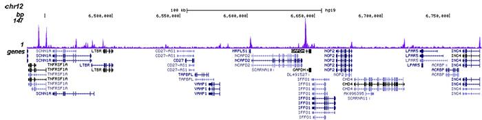 HDAC6 Antibody validated in ChIP-seq