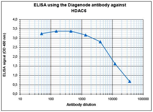HDAC6 Antibody validated in ELISA