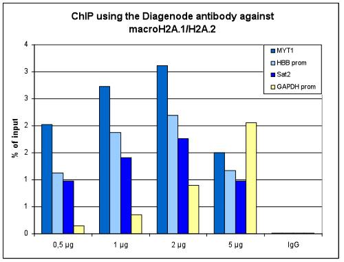 macroH2A.1/H2A.2 Antibody ChIP Grade