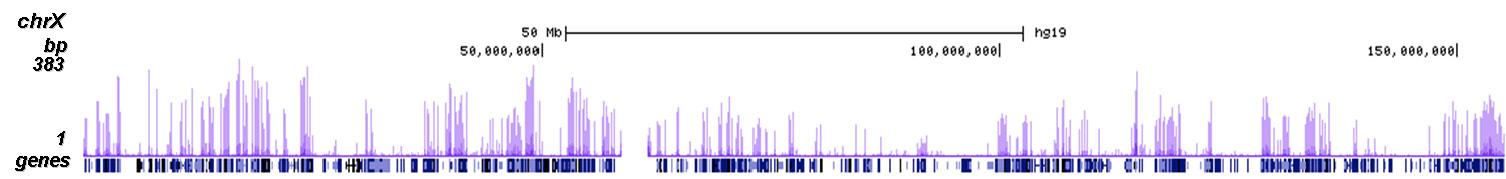 H3K23me2 Antibody ChIP-seq Grade