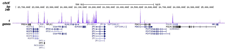 H3K23me2 Antibody for ChIP-seq