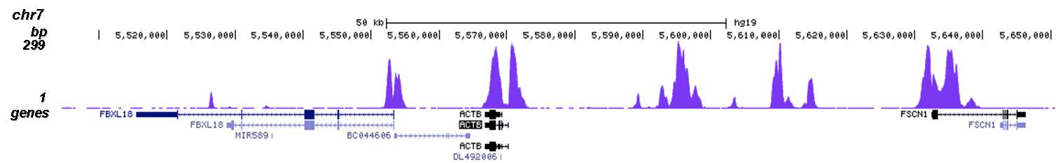 H3K23me2 Antibody for ChIP-seq assay