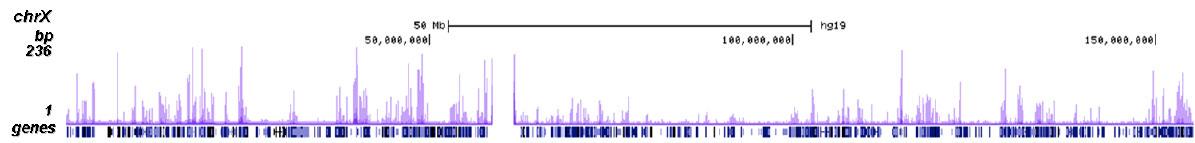 H4K20ac Antibody ChIP-seq Grade
