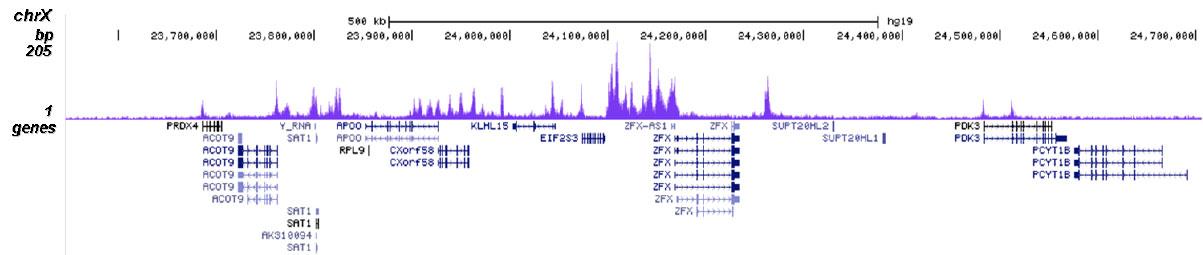 H2BK20ac Antibody for ChIP-seq
