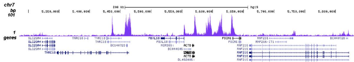 H2BK20ac Antibody for ChIP-seq assay