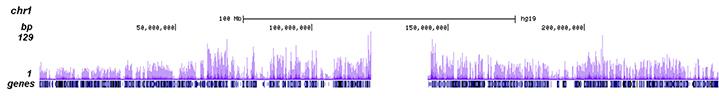 H3K4me1 Antibody ChIP-seq Grade