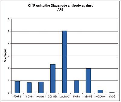AF9 Antibody ChIP Grade