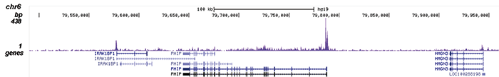 AF9 Antibody for ChIP-seq
