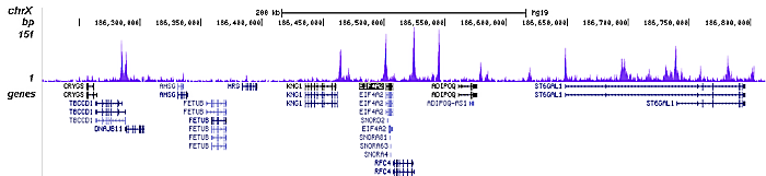 H4K12ac Antibody validated in ChIP-seq