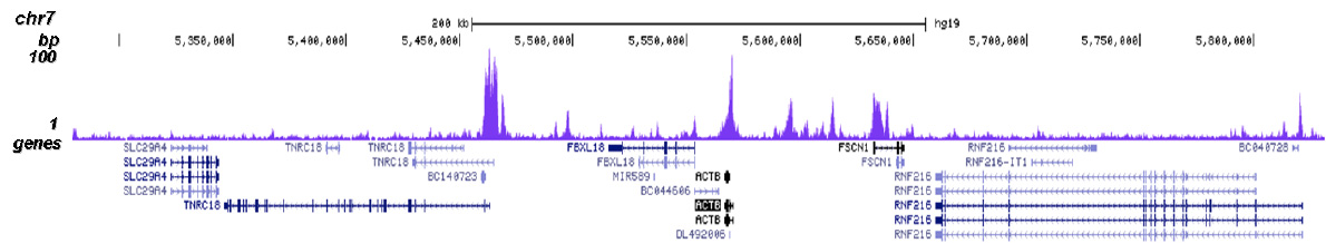 CHD1 Antibody for ChIP-seq assay