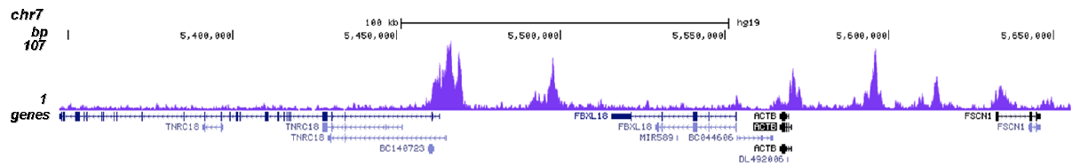 BRD4 Antibody for ChIP-seq assay