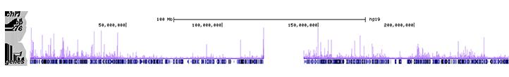 PPARg Antibody ChIP-seq Grade