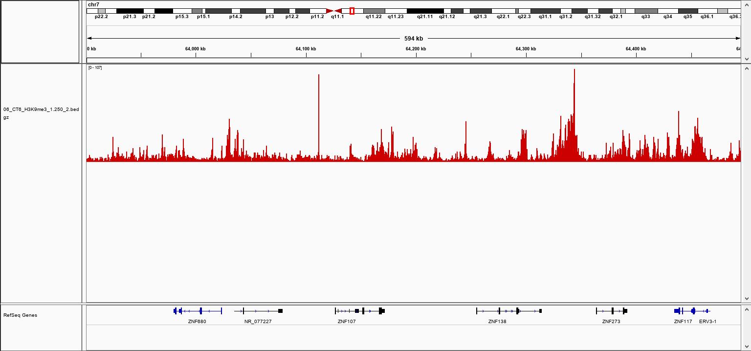 pA-Tn5 Transposase loaded  H3K9me3 Validation