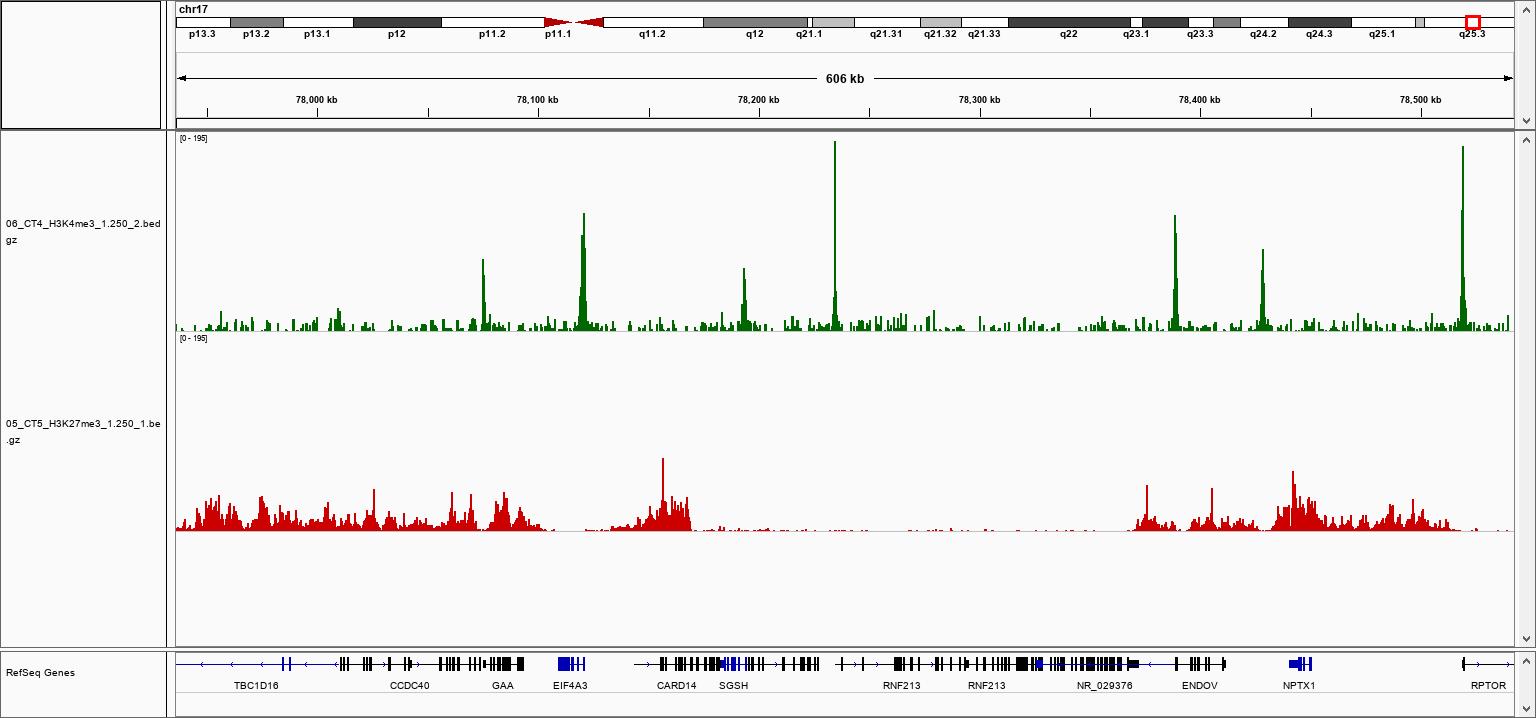 pA-Tn5 Transposase loaded H3K27me3 Validation