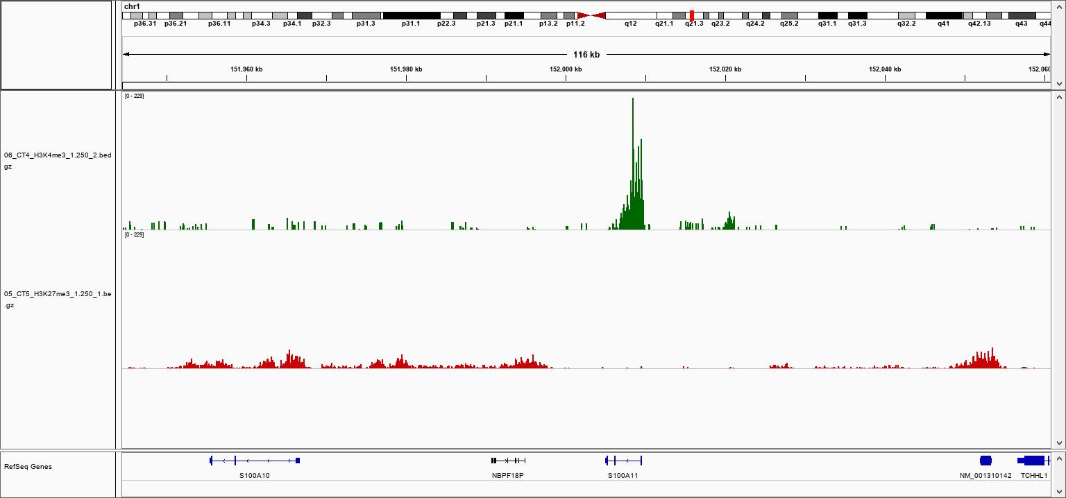 pA-Tn5 Transposase loaded H3K4me3 Validation