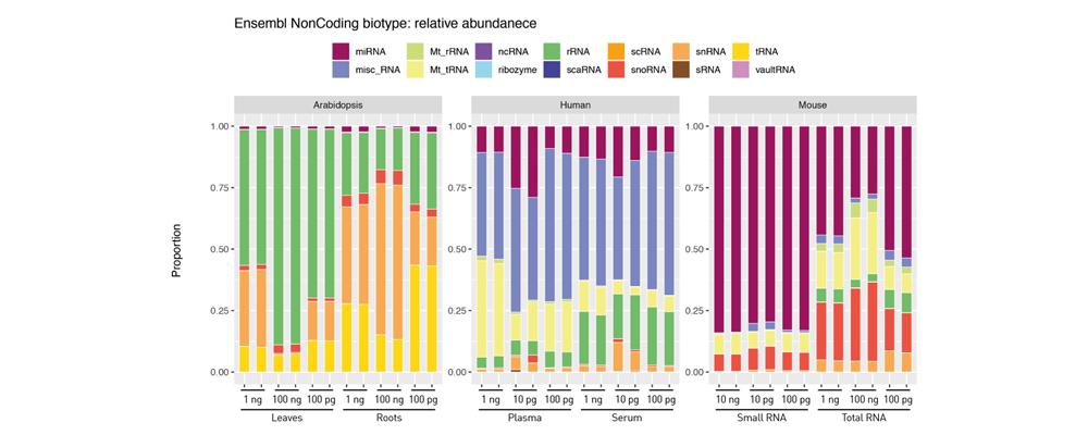 small RNA diversity