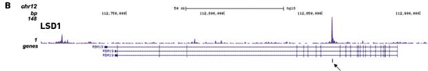 Diagenode peaks - overlapping peaks with encode dataset