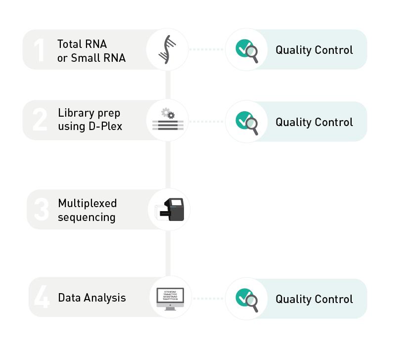 Small RNA-seq Service